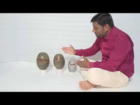 Tilak Dhari Narmadeshwar Shivling