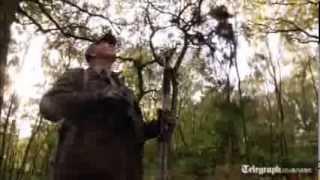 Deer hunitng: How to stalk a wild deer
