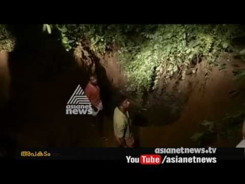 elephant falls into well dies