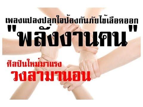 สัญญาณของพยาธิในสุกรเวียดนาม
