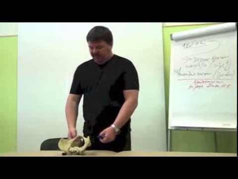 Международный протокол лечение коленного сустава