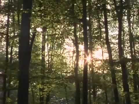 Spellbinder Season 1 Episode 3 - Finding The Way Home
