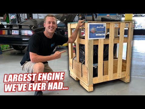 Toast's Engine is HERE... Biggest BIG BLOCK We Could Find! **FREEDOM OVERLOAD**