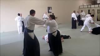 Aikido Seminar: MUSUBI with Greg Olson Sensei of Montana