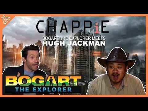 BOGART THE EXPLORER MEETS HUGH JACKMAN