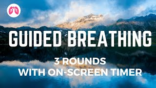 Guided Breathing (3 rounds with onscreen timer)