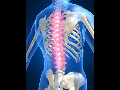 Симптомы боли в мышцах и суставах