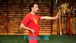 Wushu-Kungfu Tutorial 1