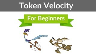 What Is Token Velocity? A Beginner
