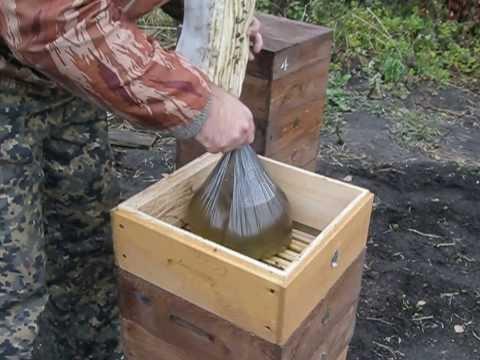 Осенняя закормка пчёл сахаром в пакетах