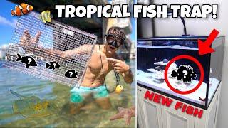 FISH TRAP CATCHES *NEW* FISH for My SALTWATER AQUARIUM!!