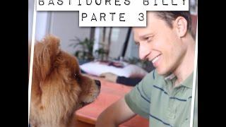 Bastidores Parte 3 - Billy, o chow chow agressivo na casa de Alexandre Rossi