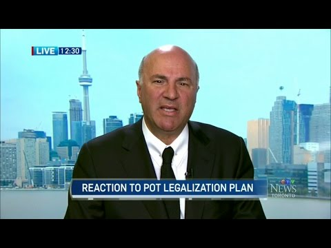 Kevin O'Leary On Marijuana Legalization