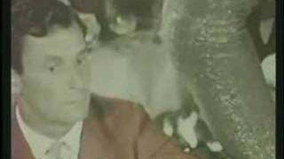 Herb Alpert - Bittersweet Samba