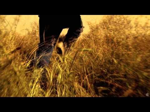 Sleepwalk With Me Sleepwalk With Me (Clip 'Comedian')