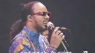 Stevie Wonder- I Just Call To Say I Love You (Natural Wonder)