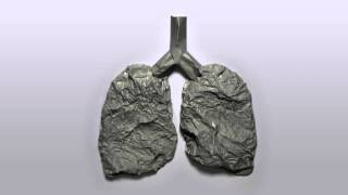 UN video about the effects of tobacco on the lungs #besmokefree – protect your lungs.
