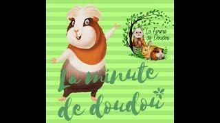 La minute de doudou : à l'adoption il porte le même prénom que le fils de dédale
