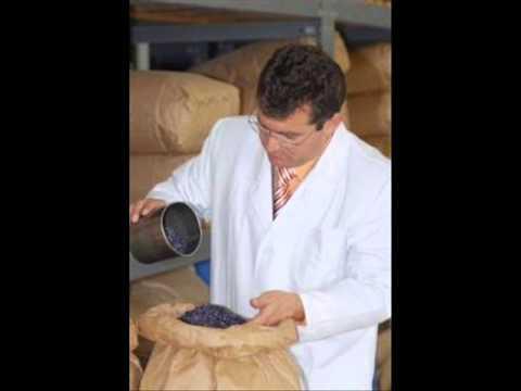 Trattamento della colonna vertebrale e del midollo protrusione dellernia
