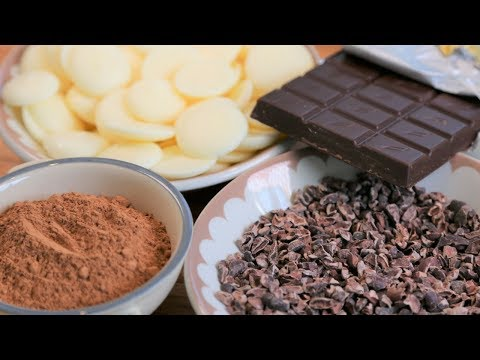 Do You Know what Chocolate Is made of?