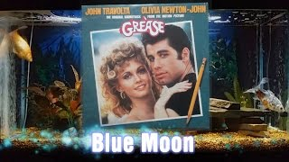 Blue Moon - Sha-Na-Na