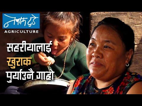 विश्वजितको लगानी तीन करोड, कमाइ करोड [ The Nepal today ] Agriculture in Nepal