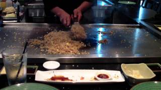 Hokkaido Japanese Sushi & Teppan Winter Springs Florida 32708 Great Food on Hibachi Grill