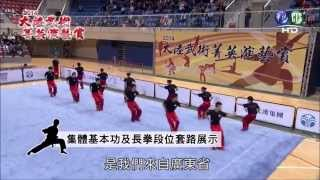 2014 China Continental Elite Martial Arts Demonstration