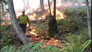 Catching Fire: Prescribed Burning in Northern CA (ENTIRE FILM)