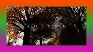 Qualify For Horizon Autumn - Pride Before The Fall | The Gables - Forza Horizon 4