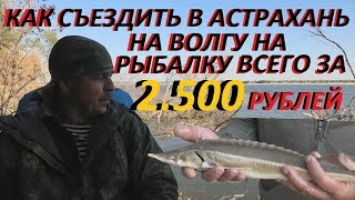 Поездка в астрахань на рыбалку из ставрополя