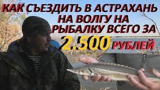 Туры на рыбалку в астрахани