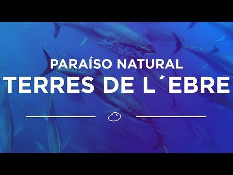 Aventura en las Terres de L´Ebre, paraíso natural