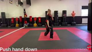 Back Hand Lower Block