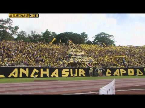 """Dvo. Táchira Campeón Temporada 2010-2011 AVSR"" Barra: Avalancha Sur • Club: Deportivo Táchira"