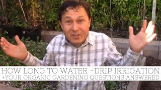 How Long to Water Your Vegetable Garden with Drip Irrigation + More Q&A