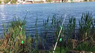 Рыбалка в парке солнечный остров краснодар