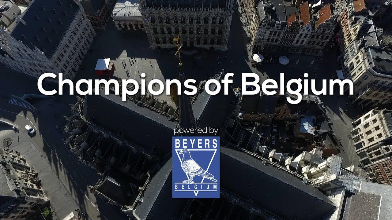 Champions of Belgium - Partea I - 2017