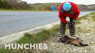 The Man Who Eats Roadkill by Munchies