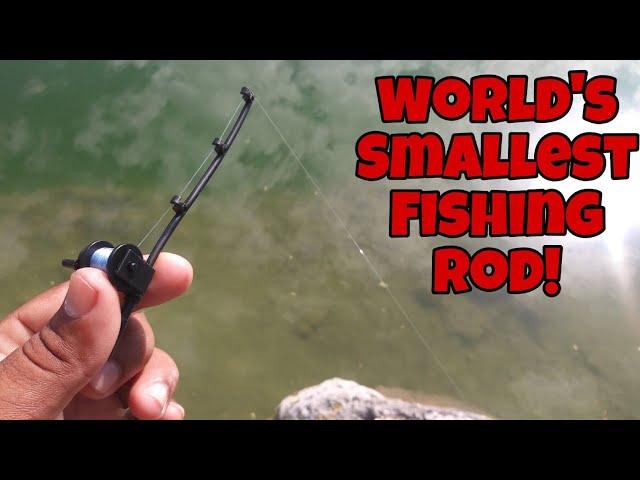 World's Smallest Fishing Rod Catches BIG FISH!