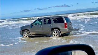 Outer Banks Wild Horse Tour - Corolla, NC