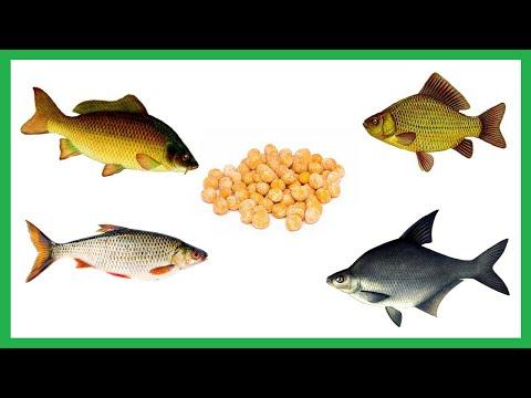 Простая и очень уловистая насадка и приманка для белой рыбы.