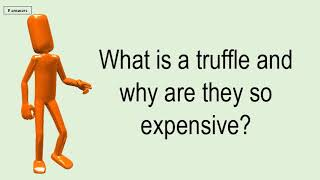What Is A Truffle And Why Are They So Expensive?