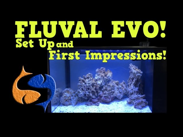Fluval Evo 13 Gallon Assembly and First Impressions!! First Reef Tank!! KGTropicals