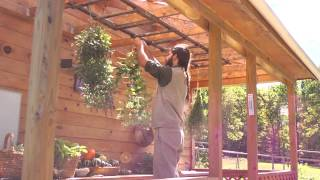 man hanging plants in a pot onto a bar in front a wooden building