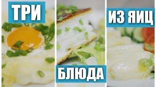 Три интересных бюджетных  блюда из яиц / Рецепты и Реальность / Вып. 246