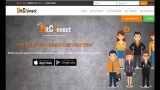 BitConnect .Регистрация и обзор кабинета