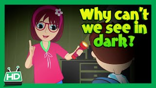 Why Can't We See in The Dark?