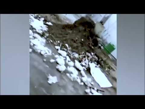 Rajnath Singh On Pulwama Attack | We Support Rajnath Singh