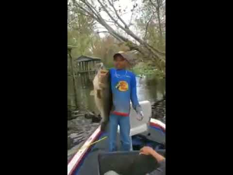 Little kid can't contain himself after catching a huge fish